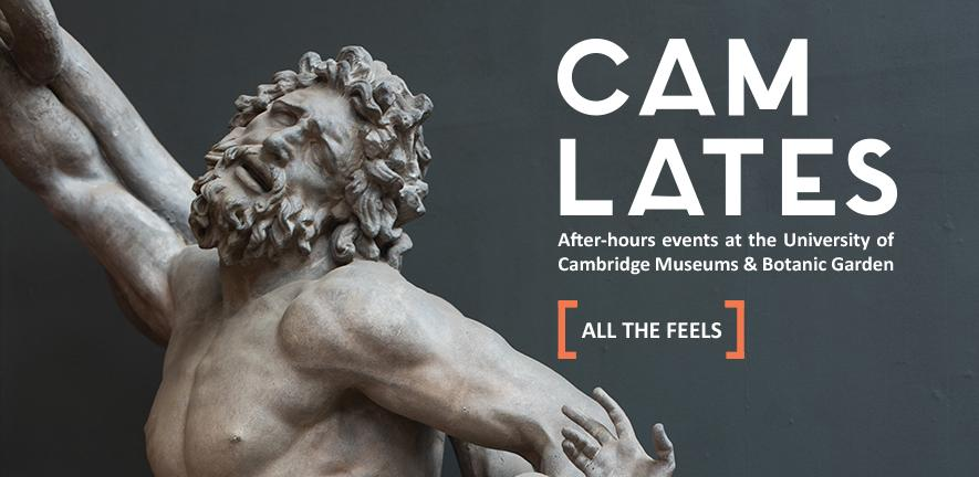 "web banner for Cam Lates with a grey background and the caption ""all the feels"". The classical sculpture of Laocoon with a tragic, dramatic face and outstretched arms."