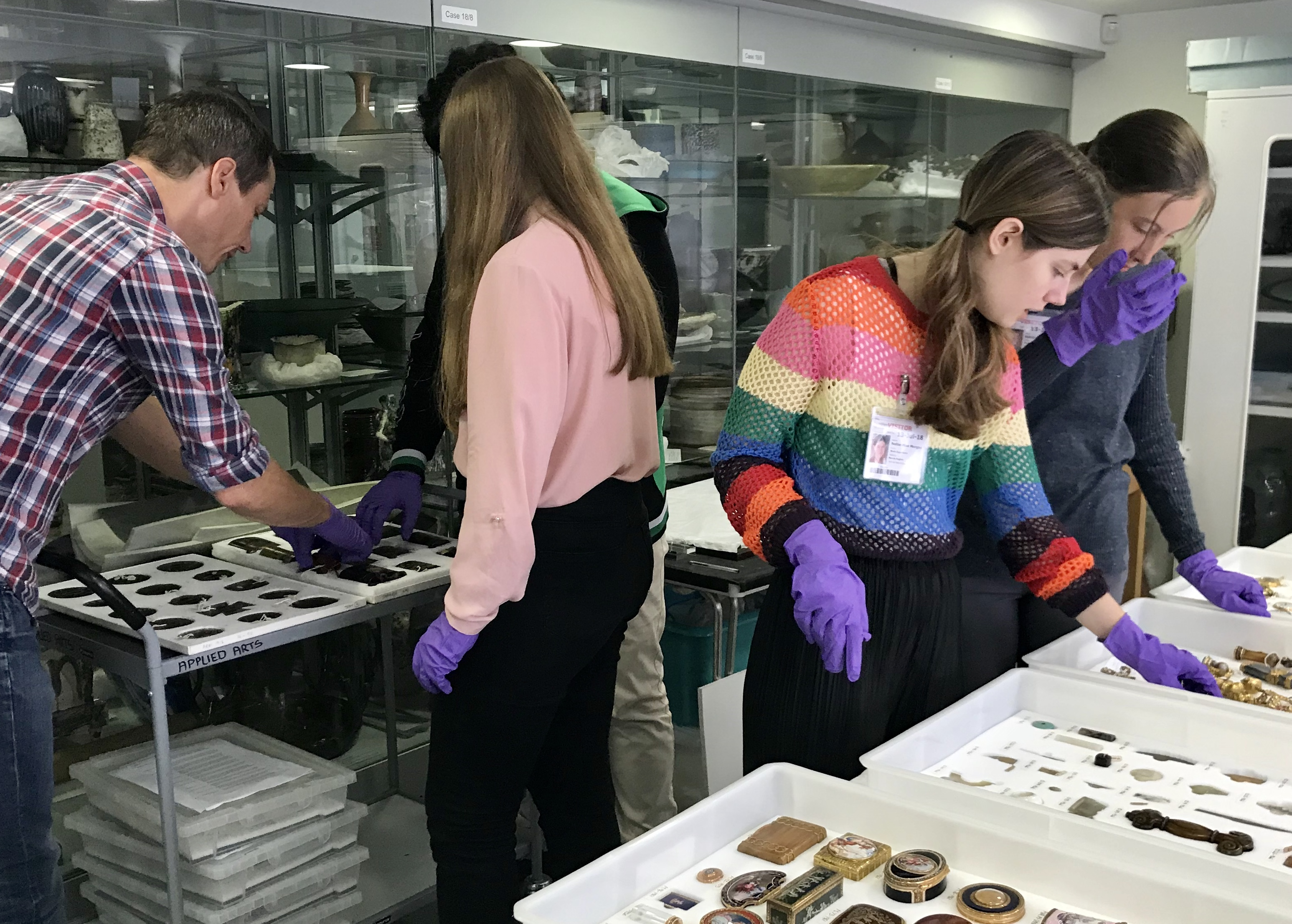 Work experience at the Zoology exploring the collections