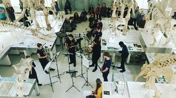 A view from above of the musicians performing in the middle of a gallery