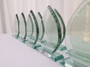 SHARE East Volunteer Awards glass trophies in a line