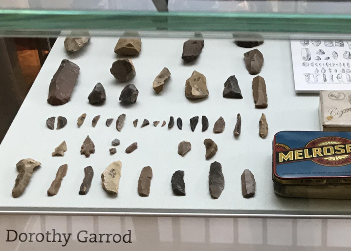 display of flints and other archaeological finds
