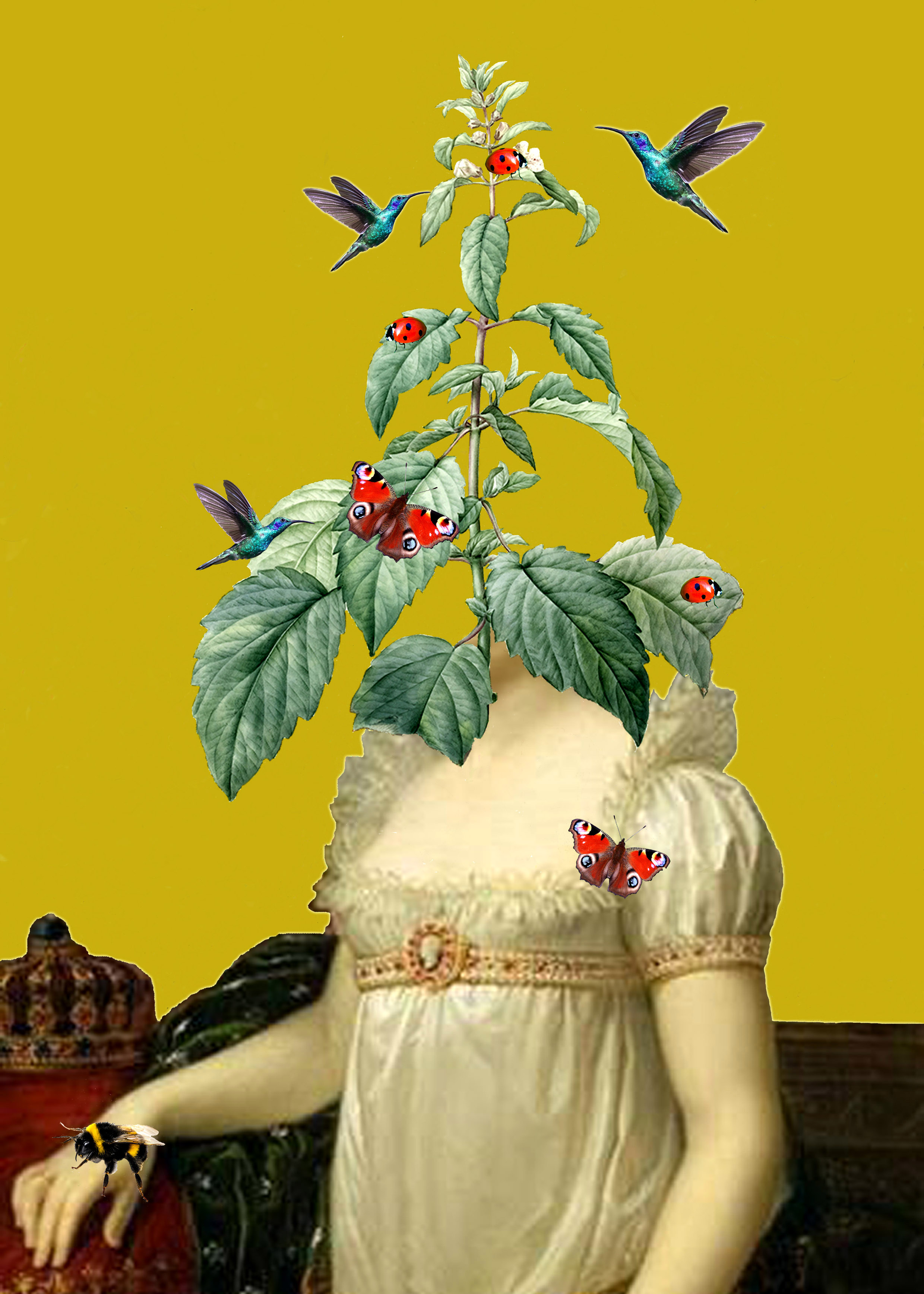 This collage shows the arms and torso of the Empress Josephine spliced together with the josephine imperatricis plant, positione where her head would be. Hummingbirds, ladybirds and butterflies flutter around the plant. Josephine faces the sitter, with her right arm slightly raised in front of a golden crown. Her white silk dress has a high empire-line waist and ruffles around the square neckline. The plant has a pyramidal shape with large, serrated leaves from a central stem, and is topped with a bloom of small white flowers.
