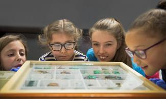 Children looking at display case