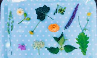 Image of flowers, leaves and grasses on a tray