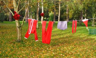 Washing line with Santa's clothes hanging on it. Trees are in the background.