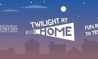 Twilight at Home banner image showing houses in silhouette and a torch logo